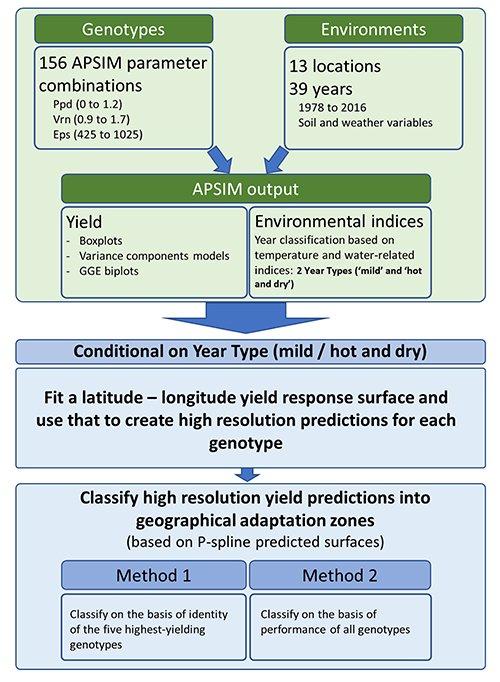 Adaptation du blé au changement climatique