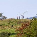Souvenez-vous de la semaine de la charité  Jardin botanique national du Pays de Galles